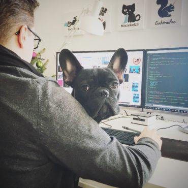 Goethe unser Bürohund