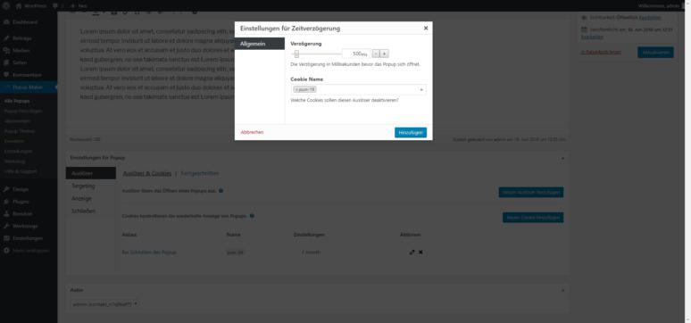 Screenshot Popup Maker WordPress Plugin Einstellungen für Zeitverzögerung